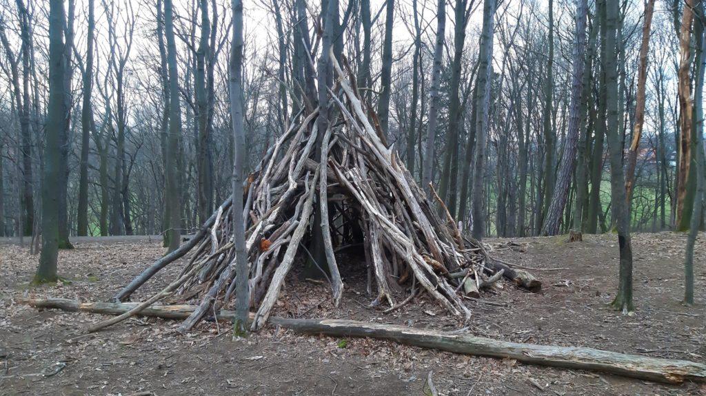 Camp_10